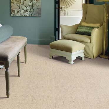 Caress Carpet by Shaw | Conway, AR