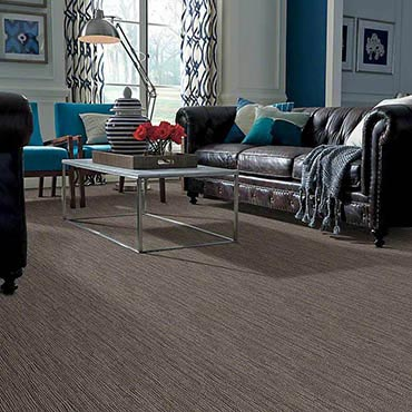 Anso® Nylon Carpet | Conway, AR